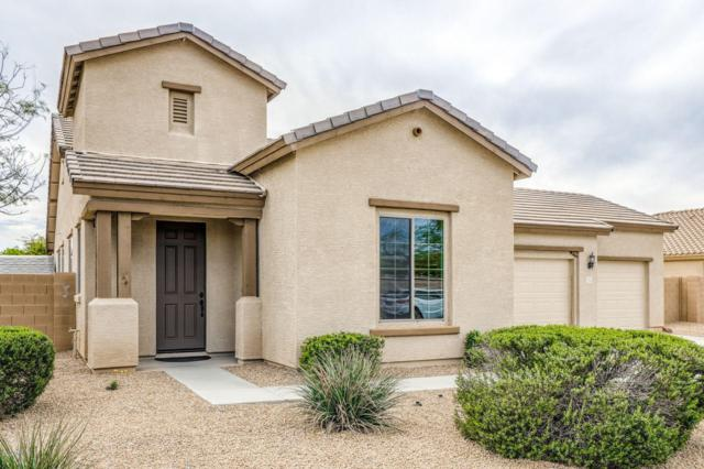 3746 S Whitman, Mesa, AZ 85212 (MLS #5907622) :: CC & Co. Real Estate Team
