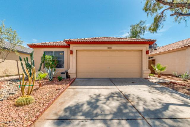 3021 W Salter Drive, Phoenix, AZ 85027 (MLS #5907630) :: Yost Realty Group at RE/MAX Casa Grande