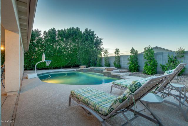 826 W Allen Street, Phoenix, AZ 85041 (MLS #5907731) :: Yost Realty Group at RE/MAX Casa Grande