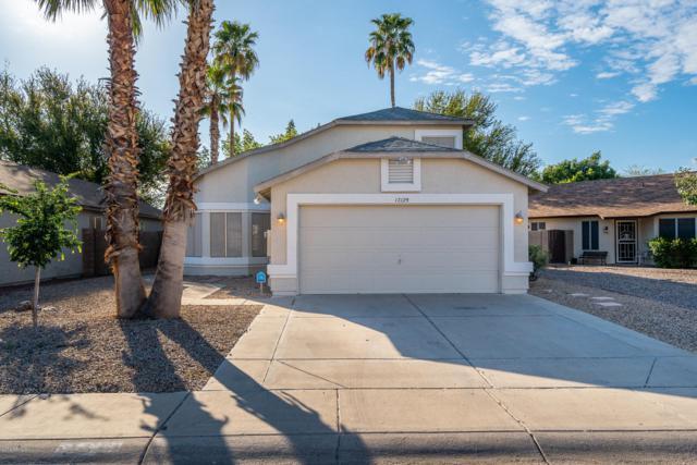 17129 N Larkspur Lane, Surprise, AZ 85374 (MLS #5907736) :: Phoenix Property Group