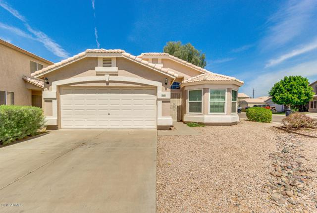 968 E Elgin Street, Chandler, AZ 85225 (MLS #5907737) :: Yost Realty Group at RE/MAX Casa Grande