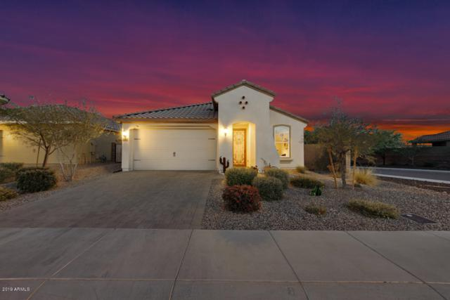 31665 N 132ND Drive, Peoria, AZ 85383 (MLS #5907747) :: Kortright Group - West USA Realty