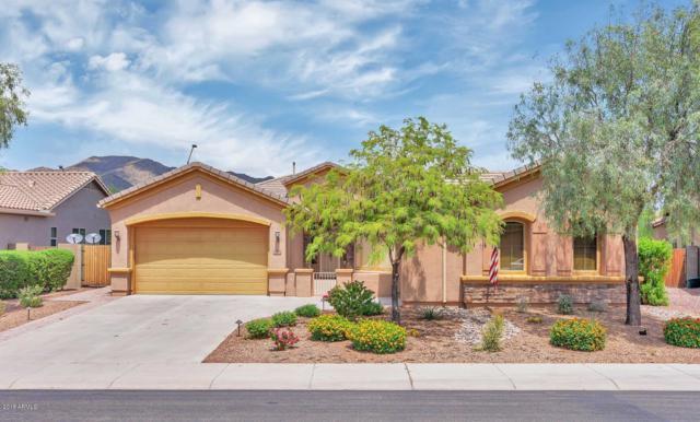 2238 W Whitman Court, Anthem, AZ 85086 (MLS #5907754) :: The Daniel Montez Real Estate Group