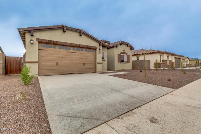 17141 W Laurie Lane, Waddell, AZ 85355 (MLS #5907766) :: Occasio Realty