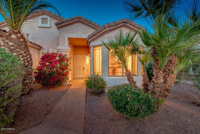 21477 N 87TH Drive, Peoria, AZ 85382 (MLS #5907774) :: Occasio Realty
