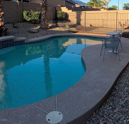 25532 W Crown King Road, Buckeye, AZ 85326 (MLS #5907805) :: Yost Realty Group at RE/MAX Casa Grande