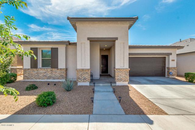 22651 E Via Del Verde, Queen Creek, AZ 85142 (MLS #5907807) :: Yost Realty Group at RE/MAX Casa Grande