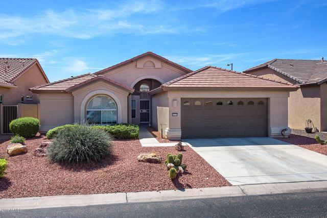 15717 W Roanoke Avenue, Goodyear, AZ 85395 (MLS #5907863) :: Yost Realty Group at RE/MAX Casa Grande