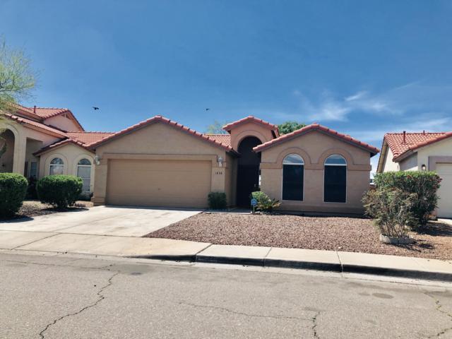 1838 N 84TH Lane, Phoenix, AZ 85037 (MLS #5907865) :: Yost Realty Group at RE/MAX Casa Grande