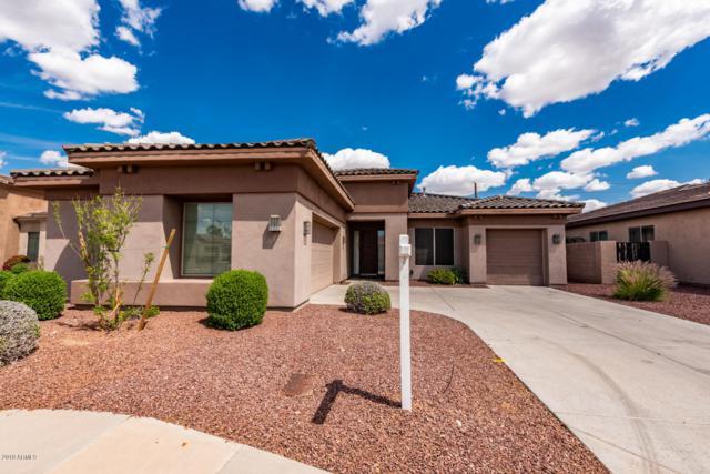 8105 S 19TH Way, Phoenix, AZ 85042 (MLS #5907878) :: Yost Realty Group at RE/MAX Casa Grande