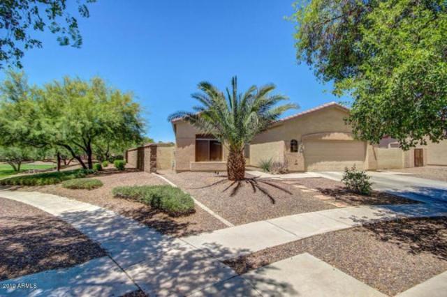 4258 E Lantern Place, Gilbert, AZ 85297 (MLS #5907953) :: Occasio Realty