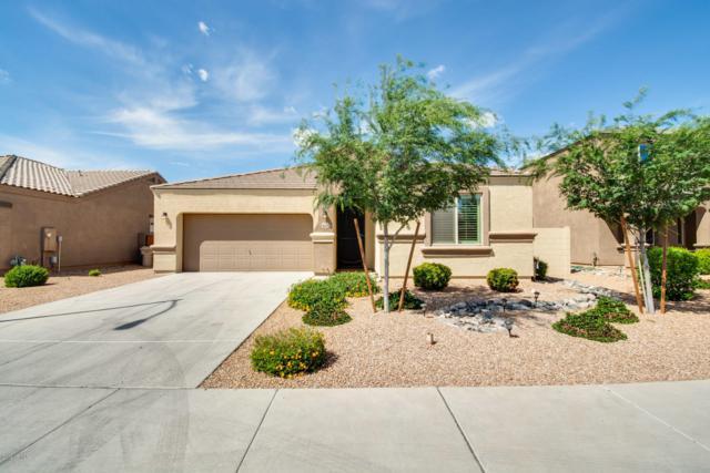 9342 W Georgia Avenue, Glendale, AZ 85305 (MLS #5907962) :: Yost Realty Group at RE/MAX Casa Grande