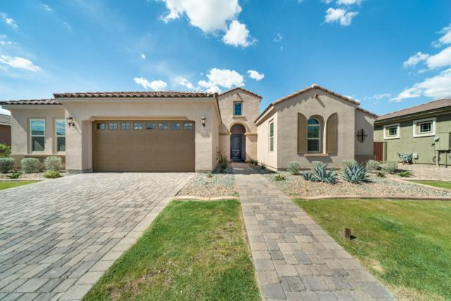10532 E Stearn Avenue, Mesa, AZ 85212 (MLS #5907982) :: Team Wilson Real Estate