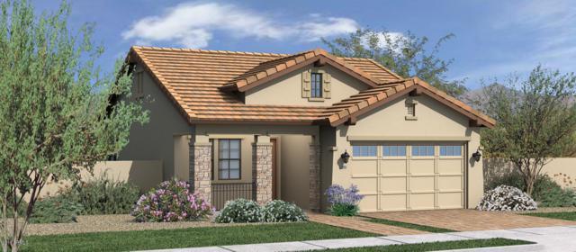 3564 E Spring Wheat Lane, Gilbert, AZ 85296 (MLS #5907993) :: The Bill and Cindy Flowers Team