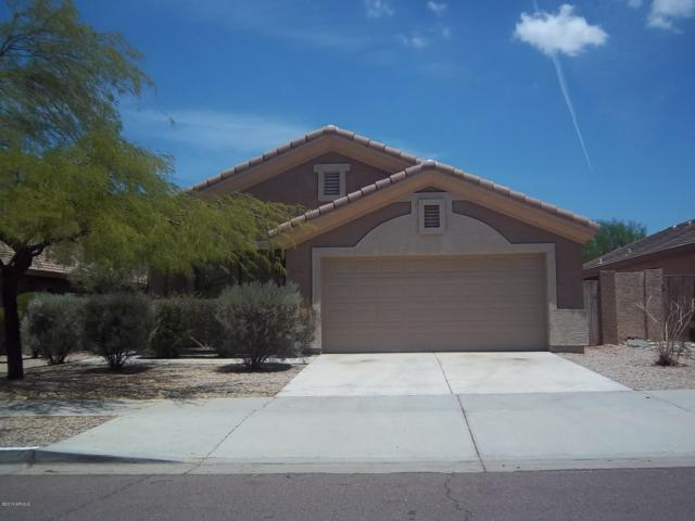 17526 W Coyote Trail Drive, Goodyear, AZ 85338 (MLS #5908004) :: Yost Realty Group at RE/MAX Casa Grande