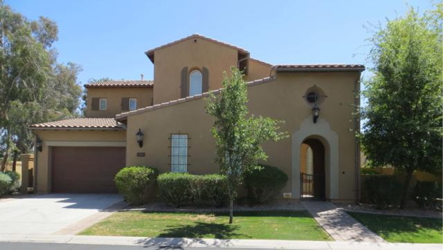 1113 W Kaibab Drive, Chandler, AZ 85248 (MLS #5908015) :: The Bill and Cindy Flowers Team