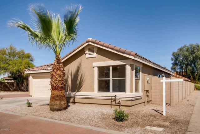2844 E Augusta Avenue, Chandler, AZ 85249 (MLS #5908029) :: Devor Real Estate Associates