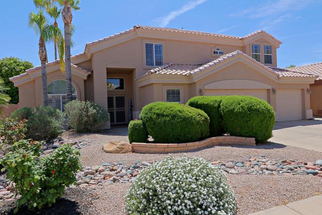 4507 E Olive Avenue, Gilbert, AZ 85234 (MLS #5908040) :: Yost Realty Group at RE/MAX Casa Grande