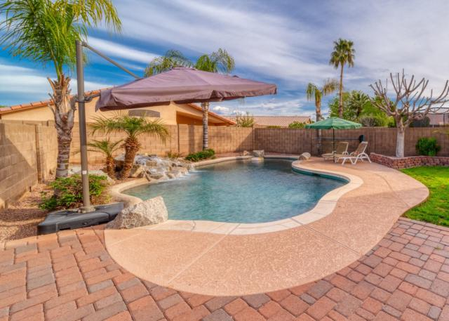 3954 E Douglas Loop, Gilbert, AZ 85234 (MLS #5908059) :: The Kenny Klaus Team