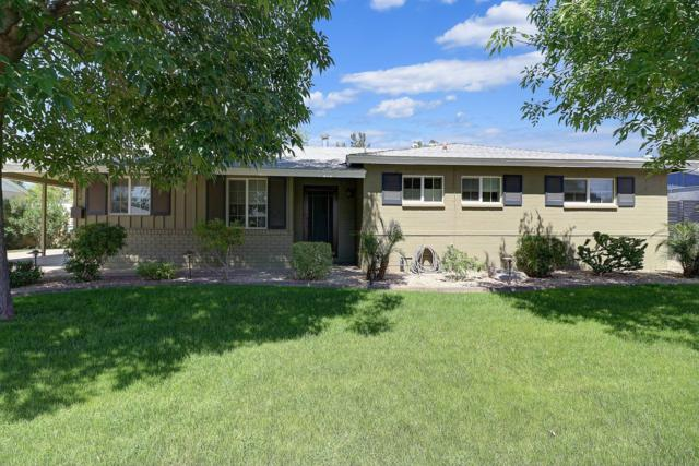 902 W Oregon Avenue, Phoenix, AZ 85013 (MLS #5908066) :: Yost Realty Group at RE/MAX Casa Grande