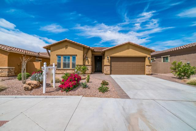 12028 S 182ND Avenue, Goodyear, AZ 85338 (MLS #5908120) :: The Everest Team at My Home Group