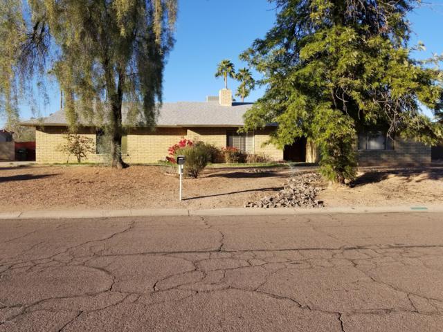 5402 E Corrine Drive, Scottsdale, AZ 85254 (MLS #5908143) :: Yost Realty Group at RE/MAX Casa Grande