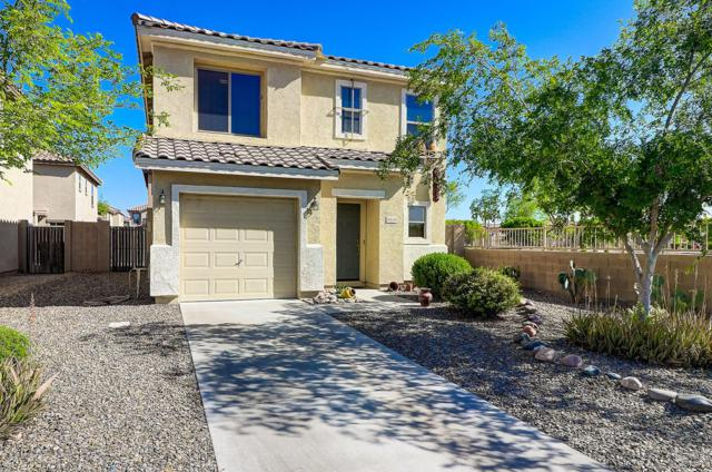 6410 W Harwell Road, Laveen, AZ 85339 (MLS #5908174) :: Yost Realty Group at RE/MAX Casa Grande