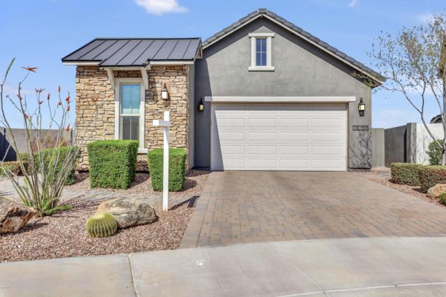 28756 N 121ST Lane, Peoria, AZ 85383 (MLS #5908177) :: Yost Realty Group at RE/MAX Casa Grande