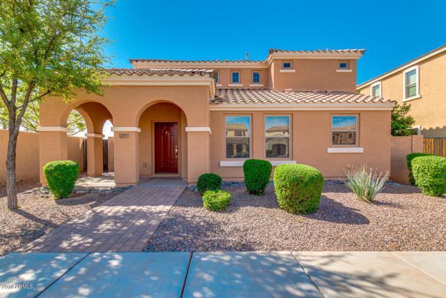 1777 S Balboa Drive, Gilbert, AZ 85295 (MLS #5908222) :: Yost Realty Group at RE/MAX Casa Grande