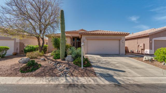 6534 S Front Nine Drive, Gold Canyon, AZ 85118 (MLS #5908285) :: RE/MAX Excalibur
