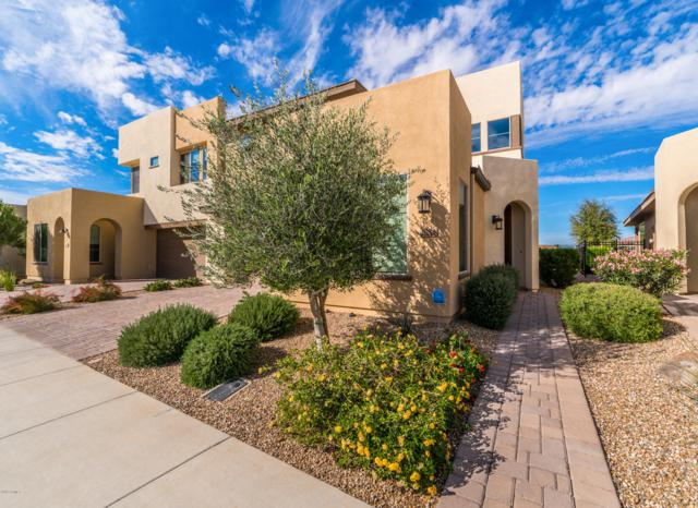 36208 N Desert Tea Drive, San Tan Valley, AZ 85140 (MLS #5908290) :: Yost Realty Group at RE/MAX Casa Grande
