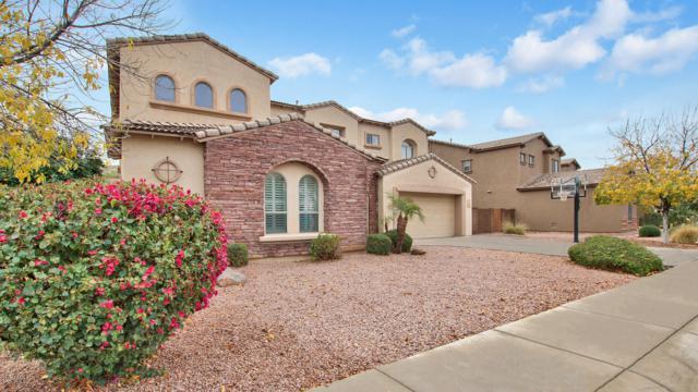3029 S Colonial Street, Gilbert, AZ 85295 (MLS #5908306) :: Yost Realty Group at RE/MAX Casa Grande