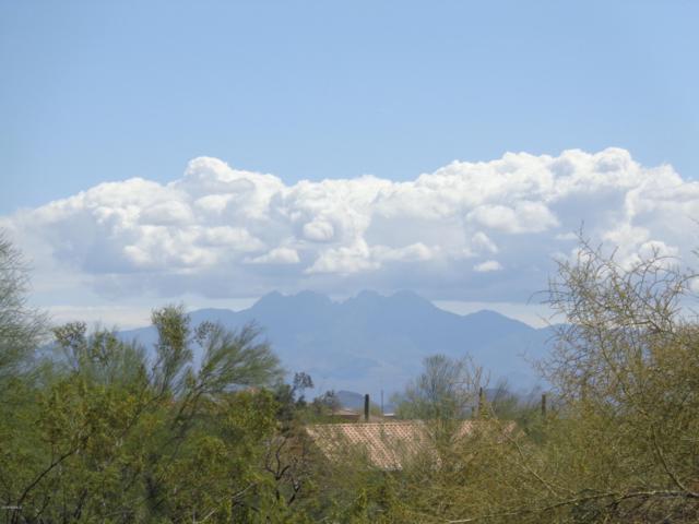 15715 E Princess Court, Fountain Hills, AZ 85268 (MLS #5908330) :: Riddle Realty Group - Keller Williams Arizona Realty