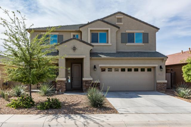 40095 W Coltin Way, Maricopa, AZ 85138 (MLS #5908375) :: The Kenny Klaus Team