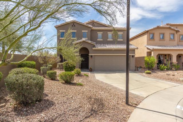 3623 W Amerigo Court, Phoenix, AZ 85086 (MLS #5908438) :: Occasio Realty