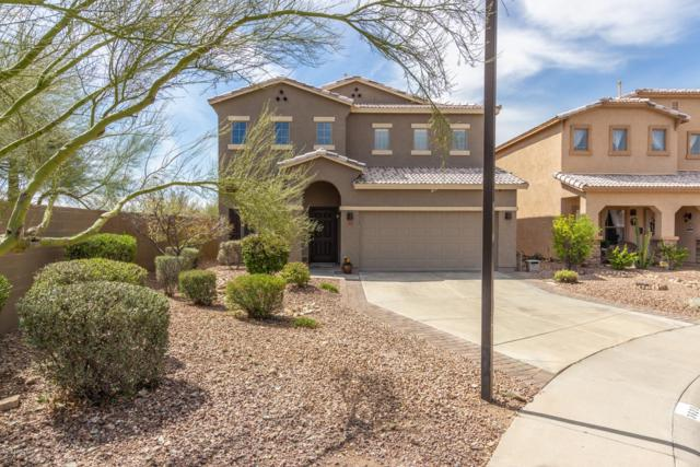 3623 W Amerigo Court, Phoenix, AZ 85086 (MLS #5908438) :: Devor Real Estate Associates