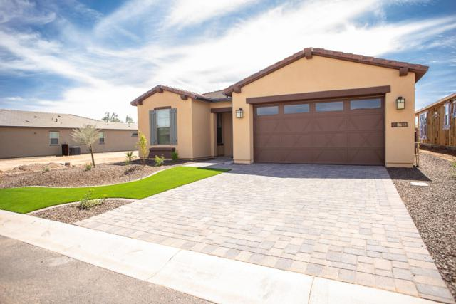17993 E Silver Sage Lane, Rio Verde, AZ 85263 (MLS #5908446) :: CC & Co. Real Estate Team