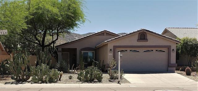 1619 E Desert Lane, Phoenix, AZ 85042 (MLS #5908447) :: RE/MAX Excalibur