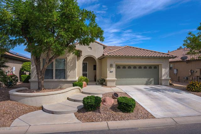 15571 W Roanoke Avenue, Goodyear, AZ 85395 (MLS #5908460) :: Yost Realty Group at RE/MAX Casa Grande
