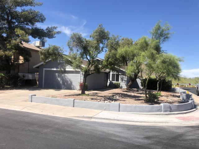 4316 W Tonto Road, Glendale, AZ 85308 (MLS #5908480) :: Yost Realty Group at RE/MAX Casa Grande