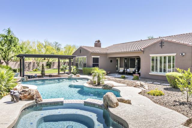 1842 W Dusty Wren Drive, Phoenix, AZ 85085 (MLS #5908562) :: Yost Realty Group at RE/MAX Casa Grande