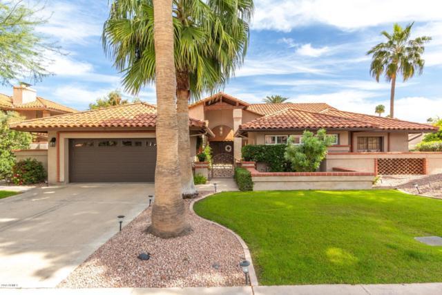9976 E Cinnabar Avenue, Scottsdale, AZ 85258 (MLS #5908575) :: Yost Realty Group at RE/MAX Casa Grande