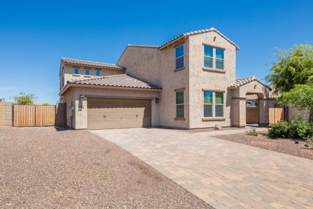 18134 W Glenrosa Avenue, Goodyear, AZ 85395 (MLS #5908576) :: CC & Co. Real Estate Team