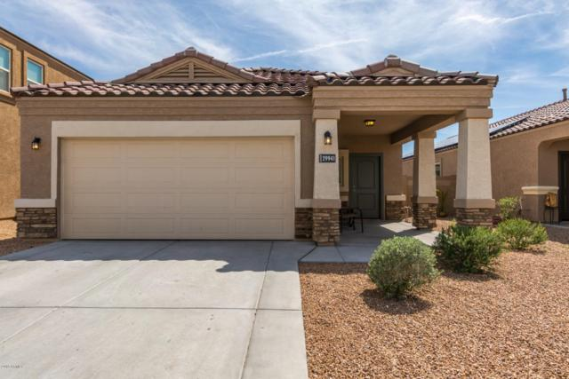 29941 W Mitchell Avenue, Buckeye, AZ 85396 (MLS #5908633) :: Arizona 1 Real Estate Team