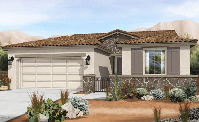 9745 E Tumeric Avenue, Mesa, AZ 85212 (MLS #5908688) :: Arizona 1 Real Estate Team