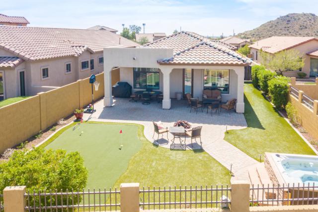 8820 E Ivy Circle, Mesa, AZ 85207 (MLS #5908694) :: CANAM Realty Group