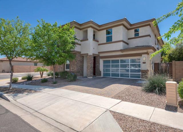 3039 E Ivanhoe Street, Gilbert, AZ 85295 (MLS #5908734) :: Yost Realty Group at RE/MAX Casa Grande