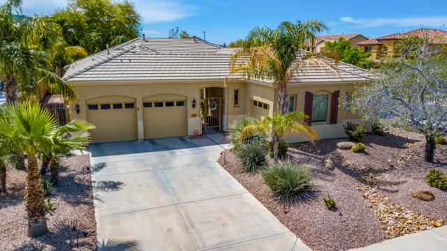 3029 E Turnberry Drive, Gilbert, AZ 85298 (MLS #5908881) :: Yost Realty Group at RE/MAX Casa Grande