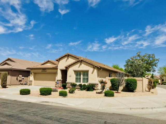 2530 W Mark Lane, Phoenix, AZ 85085 (MLS #5908894) :: Yost Realty Group at RE/MAX Casa Grande