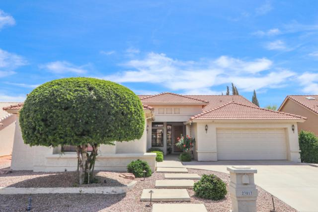 23817 S Berrybrook Drive, Sun Lakes, AZ 85248 (MLS #5908933) :: The Everest Team at My Home Group